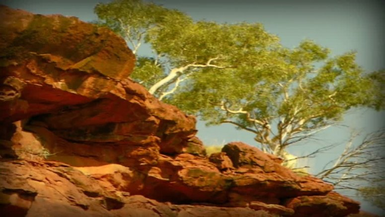 Albert Namatjira portrait story video: 2 minutes