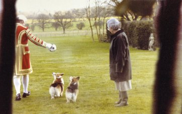The Queen plays with her corgis from the series Confidential 2007