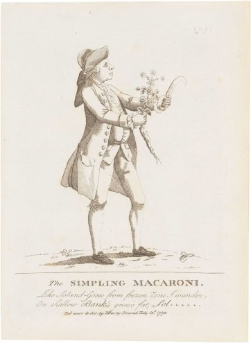 The Simpling Macaroni (Dr Daniel Solander), 1772 by Matthias Darly