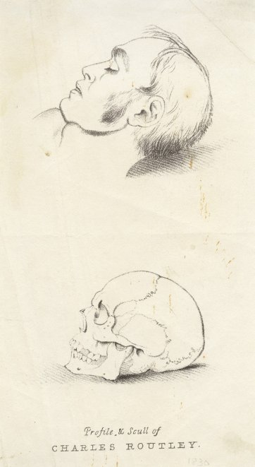 Profile and scull of Charles Routley