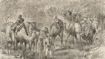 The Australian exploring expedition travelling through scrub (from the Illustrated London News 1879), 1876 Jesse Young