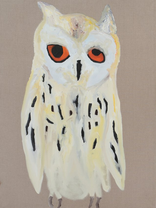 Owl, 2013 by Darren McDonald