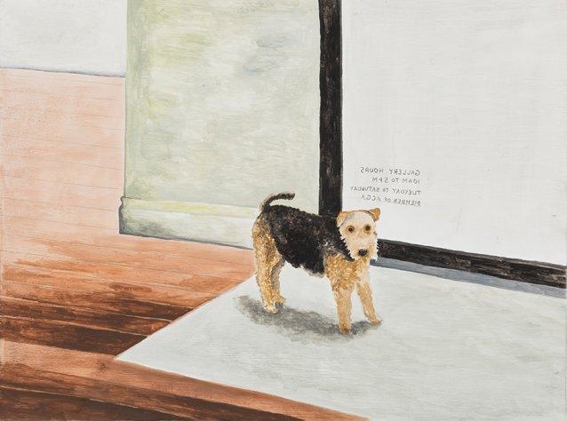 Gallery dog, Brisbane, 2014 by Noel McKenna