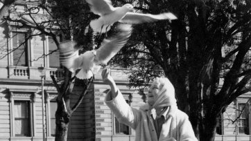 Louise Lovely feeding gulls in a park, 1969 Unknown photographer