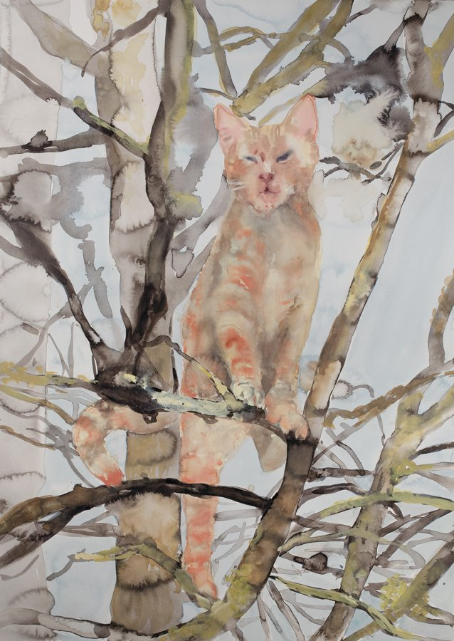 Ginger tom, 2015 by Fiona McMonagle