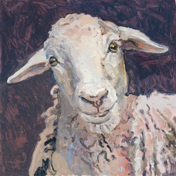 Unnamed sheep, 2016 by Lucy Culliton