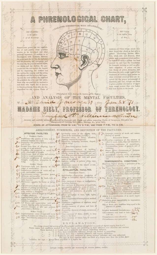 Phrenological chart and analysis of David Jones, 1871 by Marie Sibly