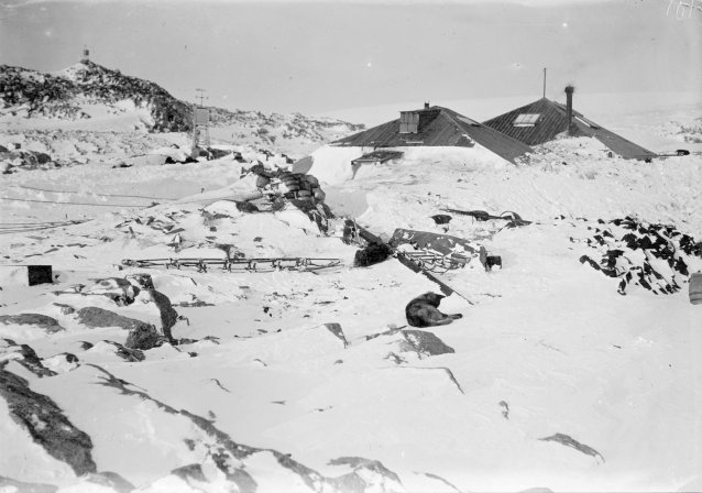 The AAE main base buried in deep snow , c. 1911-1914 Frank Hurley