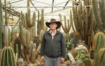 Cactus World, Lester Meyers, 2014 by Man Tsun Cheung