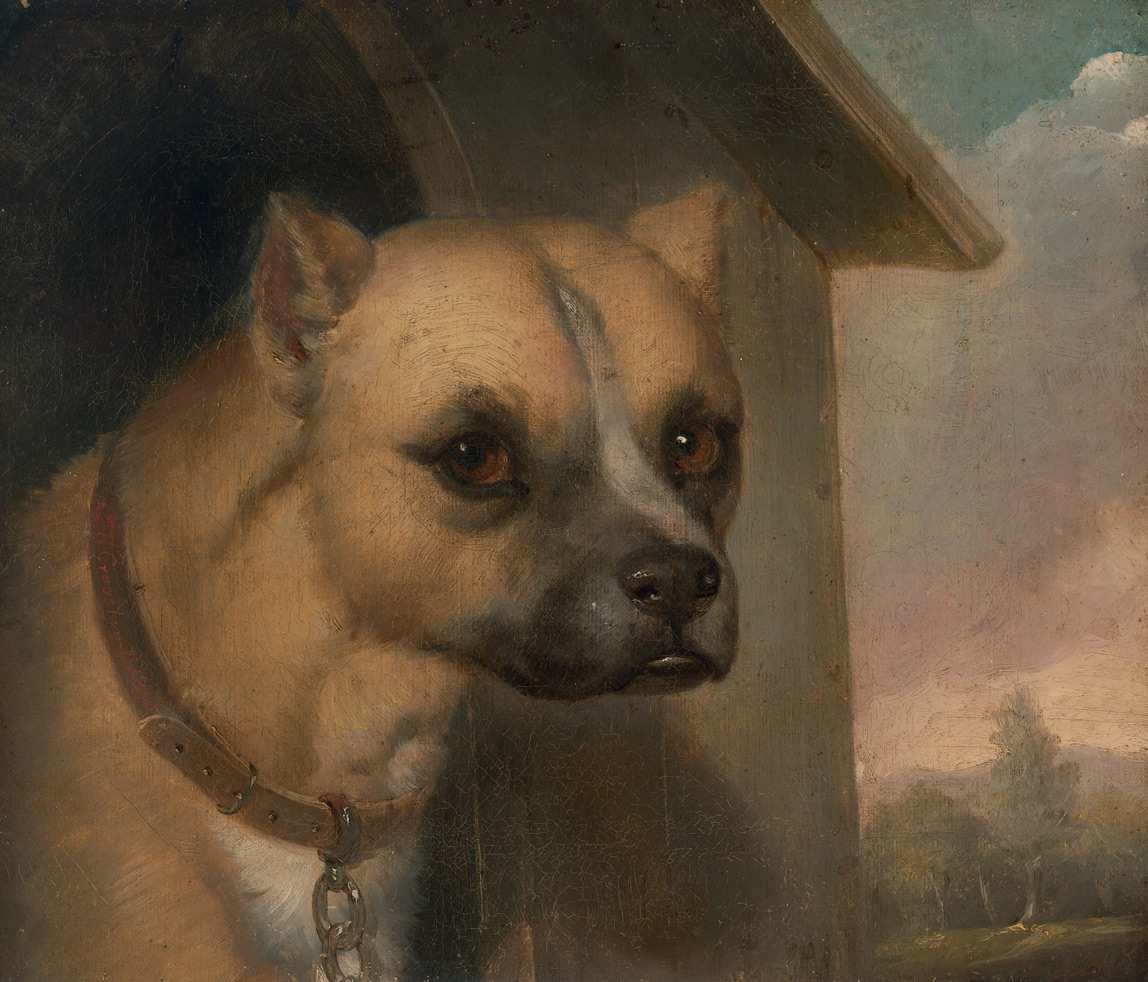 Staffordshire bull terrier belonging to the Rev. John Gower, 1851