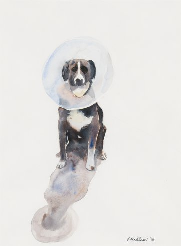 Elizabethan Collar, 2006 by Kristin Headlam